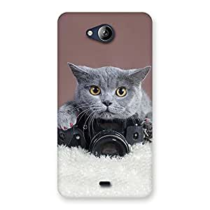Kitty Photographer Multicolor Back Case Cover for Canvas Play Q355