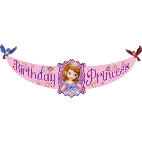 Hallmark - Disney Junior Sofia the First Birthday Princess Banner - 1