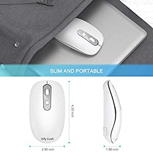 Type C Wireless Mouse, Jelly Comb 2.4G Wireless Mouse USB C Computer Mice with Nano USB and Type C Receiver Compatible with Notebook, Computer, Laptop, MacBook and All Type C Device-White and Silver