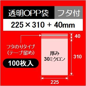 Transparent OPP bag with cover 225 × 310 cover 40 mm (for A4) [100]