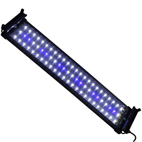 Mingdak LED Aquarium Light Fixtures for Fish Tanks,led Reef Aquarium Lighting,72 Leds,20-inch,white and Blue (24 X 12 Tank Lid compare prices)