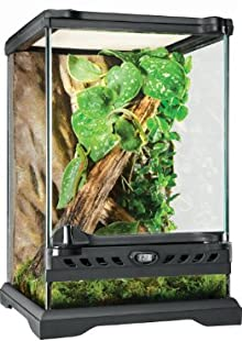 Exo Terra Glass Natural Terrarium Nano/Tall - 8 x 8 x 12 Inches