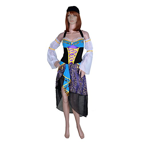 Gypsy Fortune Teller Mystic Medieval Costume Gypsy Princess Costume
