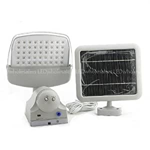 Solar or AC Powered Security Floodlight with Motion Sensor and 45 LED, Self Powered Shed Light, 2009