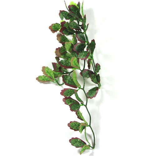Reptile Vivarium Jungle Silk Plant Red Croton Small