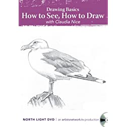 Drawing Basics, How to See, How to Draw with Claudia Nice