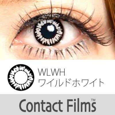 1ヶ月 ±0.00 カラコンコンタクトフィルム WILD ワイルドホワイト