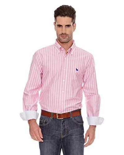 Toro Camisa