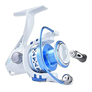 KastKing Summer Spinning Reel - Light Weight Ultra Smooth Yet Powerful Spinng Fishing Reels [2016 New Generation Release]