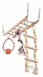 Pont suspendu , 29 × 25 × 9 cm, souris, hamsters
