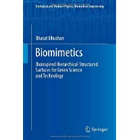 Biomimetics: Bioinspired Hierarchical-Structured Surfaces