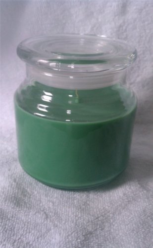 Christmas Hearth Soy Wax Candle 16oz (Green)