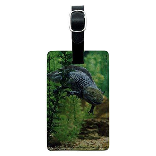 Axolotl-mexikanischen salamandar-Wasser Monster Leder Gepäck ID Tag Koffer