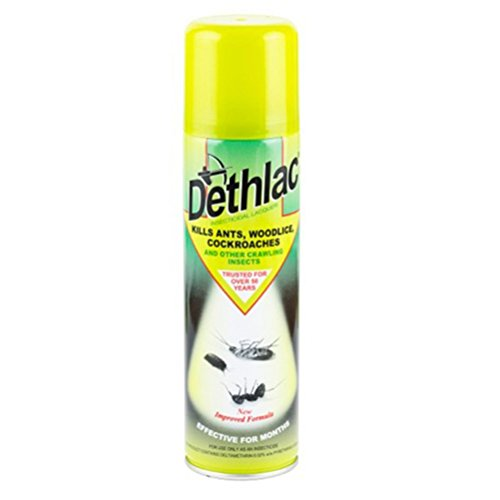 dethlac-insecticidal-lacquer