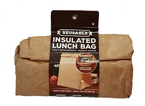 reuseable-insulated-lunch-bag-magnetic-closure-tear-water-resistant
