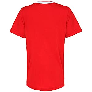 OFFICIAL FOOTBALL MERCHANDISE Junior Liverpool FC t-shirt - Red / Gold - Aged 6/7