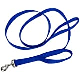 Loops 2 Double Handle Nylon Leash, 6-Foot, Blue