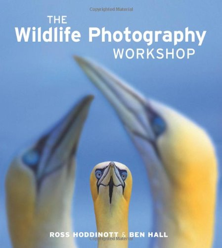 Wildlife Photography Workshop, The