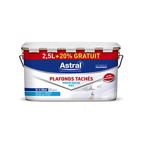akzonobel-as5211999-vernice-per-soffitti-monostrato-25-l-20-colore-bianco-opaco
