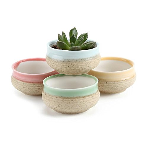 t4u-275-inch-ceramic-sugar-serial-sucuulent-plant-pot-cactus-plant-pot-flower-pot-container-planter-