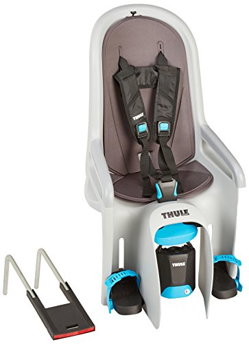 Best Buy! Thule RideAlong Child Bike Seat