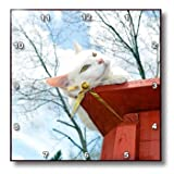 Beverly Turner Cat Photography - Greened Eyed White Cat on Patio Railing with Cloudy Sky - Wall Clocks - 15x15 Wall Clock - dpp_192625_3