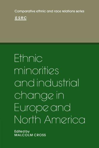 Ethnic minorities america essay