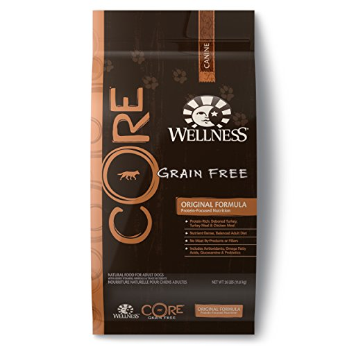 Wellness CORE Natural Grain Free Dry Dog Food, Original Turkey & Chicken Recipe, 26-Pound Bag