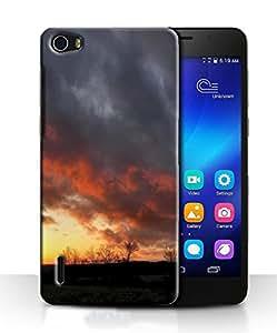 PrintFunny Designer Printed Case For HuaweiHonorHolly6