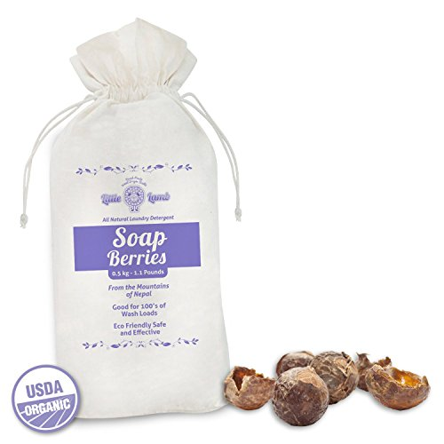 100% Natural Soap Nuts- Essential for all Eco-friendly Laundry Supplies. Perfect laundry detergent for Cloth Diapers, totally organic containing zero harsh chemicals - 1.1lbs - 1