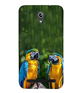 Blue Yellow Parrots 3D Hard Polycarbonate Designer Back Case Cover for Asus Zenfone Go ZC500TG (5 Inches)