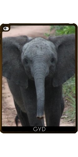 case-for-apple-ipad-air-2-elephant-africa-exotic-by-wonderfuldreampicture