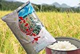新米 千葉の美人米♪21年産千葉県産ふさおとめ 白米5kgx1袋 長期保存包装