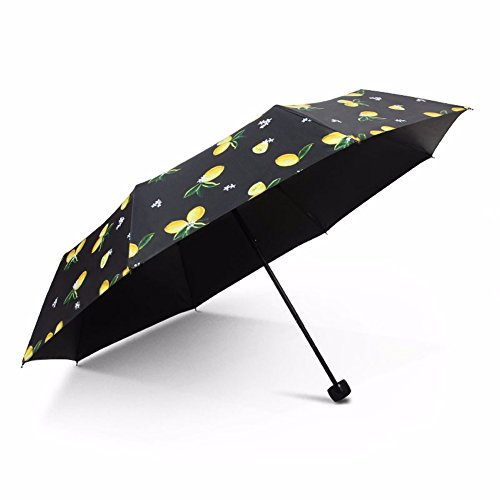 ssby-rain-umbrella-folding-dual-use-korea-sunscreen-vinyl-umbrellas-sun-umbrella-uv-protection-umbre