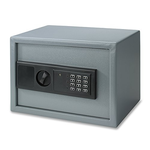 Neiko Digital Electronic Safe for Home or Business - 1.0 Cubic Foot Interior Space - Gray by Neiko (1 Cubic Foot Safe compare prices)