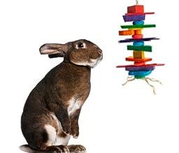 Medium Crazy Color Rabbit Chew Toy