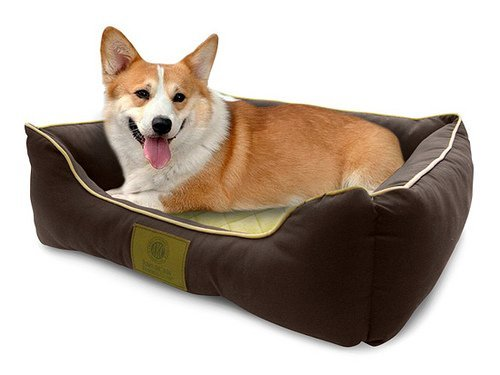 American Kennel Club Self-warming Thermal Pet Bed