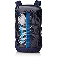 Patagonia Black Hole 25L Daypack (Multiple Colors)