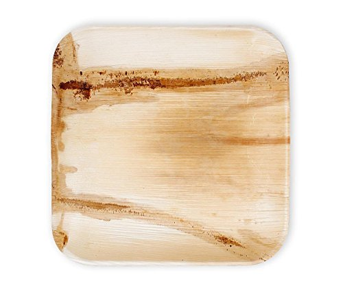25-heavy-duty-tree-free-eco-plates-9-inch-square-100-palm-leaf-bleach-free-natural-sustainable-home-