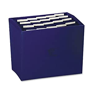 Wilson Jones ColorLife Insertable Tab Expanding File, 17 Inch Expansion, 21 Pockets, 10 x 12 Inches, Dark Blue (W23286)