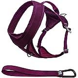 Kurgo Go-Tech Adventure Dog Harness, Medium, Raspberry