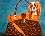 41aXTNQrajL. SL160  Louis Vuitton Handbags