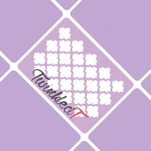quatrefoil-almaz-stencils-nail-vinyls-by-twinkled-t-1-sheet-of-16-stencils