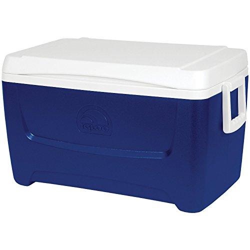 igloo-island-breeze-48-borsa-frigo-colore-blu