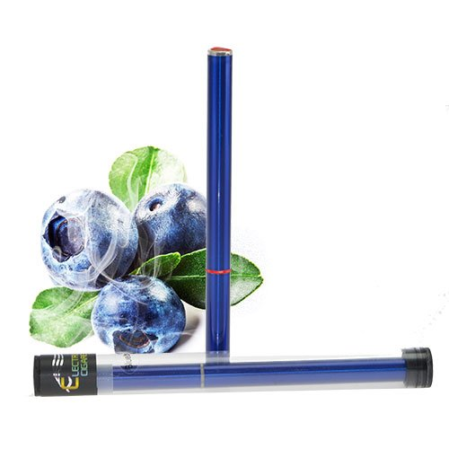 Luxus E Shisha 500 Zug Blaubeere Profi Wasser Pfeife Multi LED E-Hookah to go 2 go