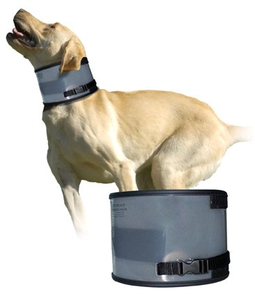 EJay Bite Free Collar 19-23 inch neck