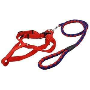 Pet Dog Release Buckle Harness Swivel Lobster Clasp Nylon Leash Red Blue