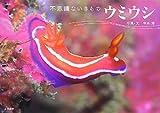 ウミウシ—不思議ないきもの