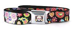 Thaneeya McArdle Colorful Sugar Skulls with Paisley Seatbelt Belt