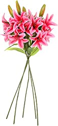 UberLyfe Real Touch and Look 4 Artificial Flower Tiger Lily Passionate Pink_5Bunch-FL-000632-LY-DPK5B4F